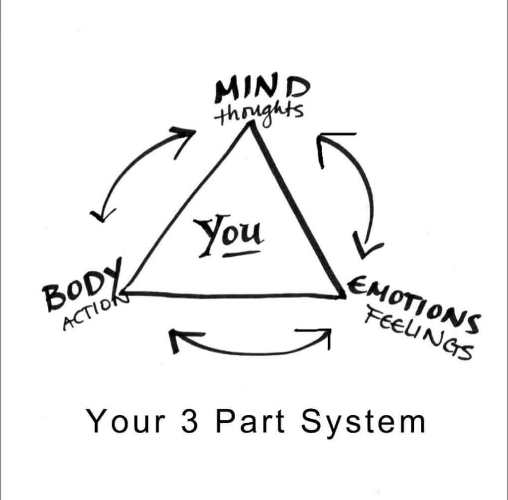 Body/Mind-Emotion 3 part system affects stress