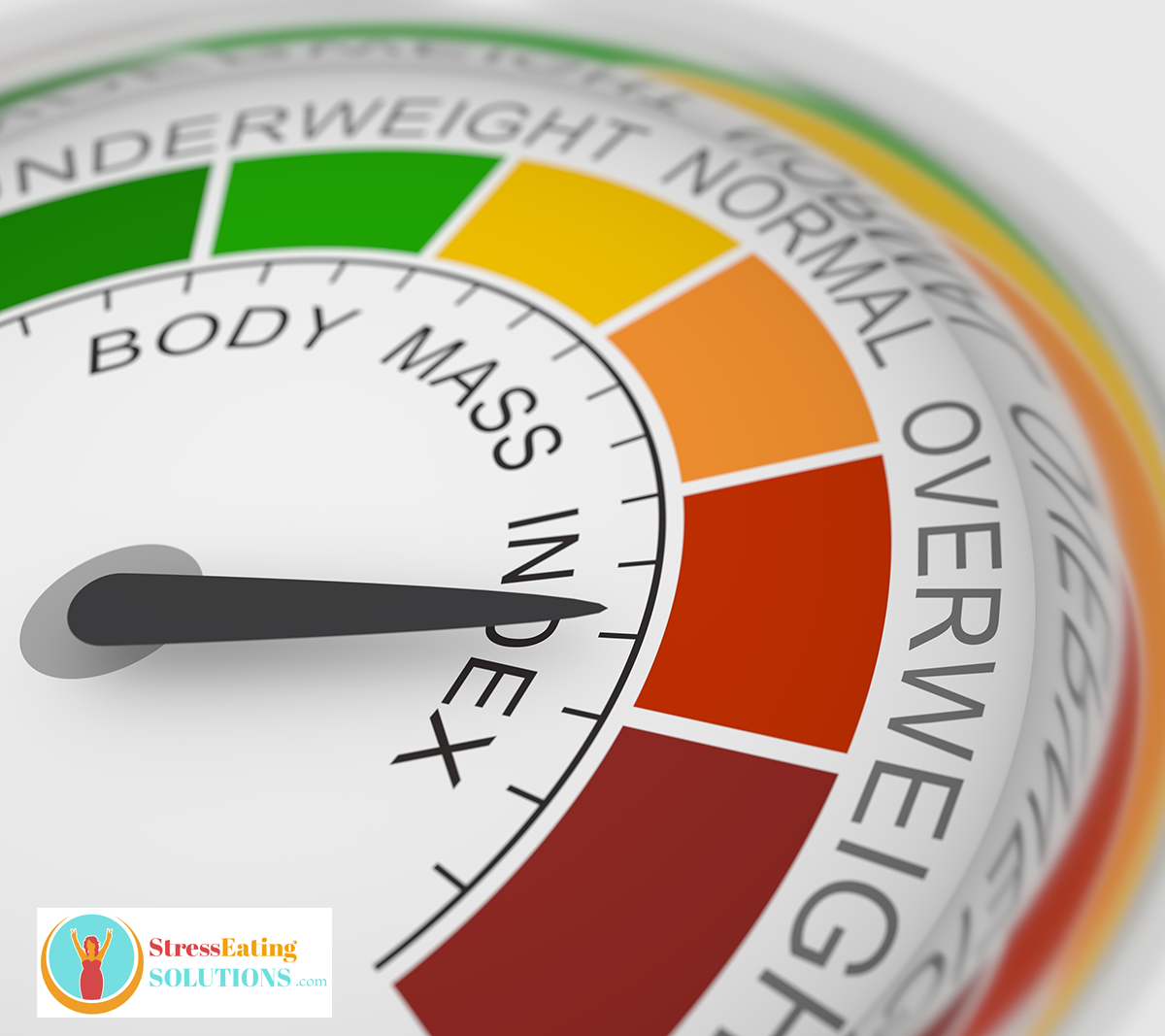 BMI index chart is misleading at best